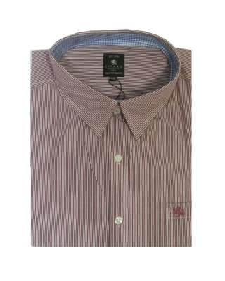 Риза Kitaro 166771