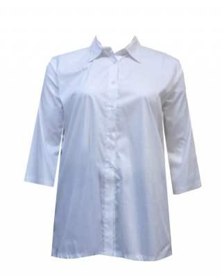 Блуза Isabel