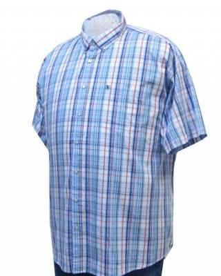 Риза Светлосиньо каре